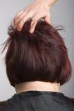 Ruche de coiffeur photographie stock libre de droits