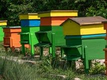 ruche Ruches dans le rucher Abeilles grandissantes pour obtenir le miel Abeille Photographie stock libre de droits