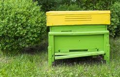 Ruche verte Photographie stock libre de droits