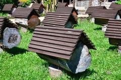 Rucher avec des ruches d'abeille en l'Abkhazie Photo libre de droits