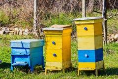 ruches Images libres de droits