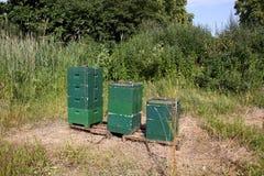 Ruches d'abeille Images libres de droits