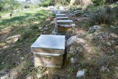Ruches et tout autre appareil de l'apiculture pour des abeilles d'élevage Image stock