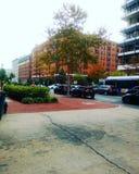 Ruchliwe ulicy washington dc & x28; USA& x29; Zdjęcie Royalty Free