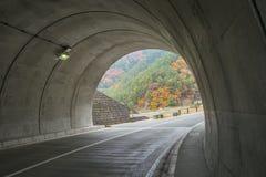 Ruchu drogowego tunel blisko wśrodku Kawaguchiko jeziora Zdjęcia Stock