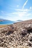 Rucica wyrzucać na brzeg widok na wyspie Pag w Chorwacja obrazy stock