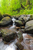 Ruckel小河在哥伦比亚河峡谷在俄勒冈 库存图片