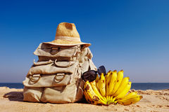 Rucksack and bananas Royalty Free Stock Images