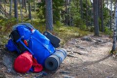 Rucksack im Wald Stockbild