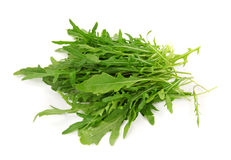 Rucola Royalty Free Stock Image