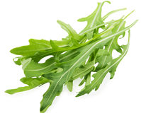 Rucola Royalty Free Stock Photos