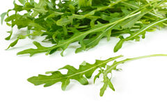 Rucola. Royalty-vrije Stock Afbeelding