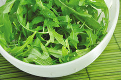 Rucola. Freshly washed rucola in a colander Stock Photos