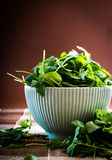 Rucola in bowl Stock Photo