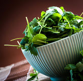 Rucola in bowl Royalty Free Stock Photos
