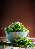 Rucola in bowl Royalty Free Stock Photography