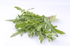 Rucola bunch isolated over white Stock Images