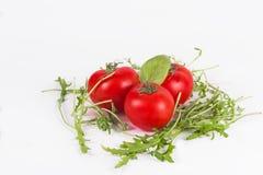 Rucola fresco con los tomates aislados en blanco Fotografía de archivo libre de regalías