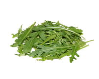 Rucola Stock Images
