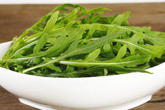 Rucola fresh salad Royalty Free Stock Images