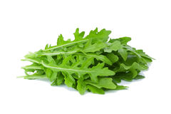 Rucola isolated on white background Royalty Free Stock Photo
