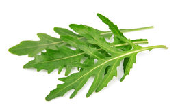 Rucola leaves Royalty Free Stock Photo