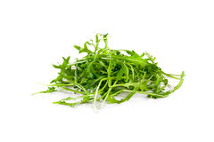Rucola leaves isolated on white Royalty Free Stock Photos