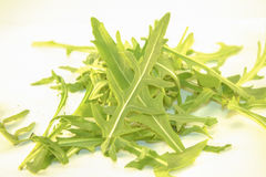 Rucola Stock Image