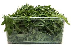 Rucola in a plastic box Royalty Free Stock Photo