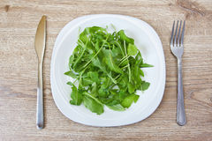 Rucola on plate. Knife and fork Royalty Free Stock Images