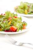 Rucola salad Stock Image