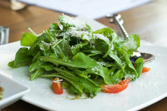 Rucola salad Royalty Free Stock Images