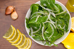 Rucola salad leaves Royalty Free Stock Image