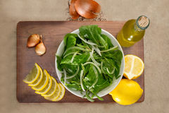 Rucola salad leaves Royalty Free Stock Photos