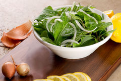 Rucola salad leaves Stock Photography