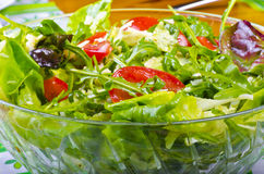 Rucola salat. Freshness greens rucola salad with tomatoes and cheese Royalty Free Stock Photography