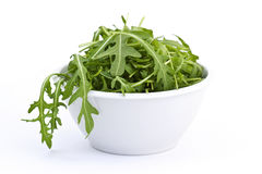 Rucola in white bowl Royalty Free Stock Photography