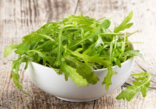 Rucola in white bowl Stock Image