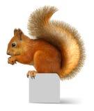 ruda wiewiórka Zdjęcie Stock