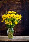 Rudbeckia bright yellow flowers bouquet on dark background Royalty Free Stock Image