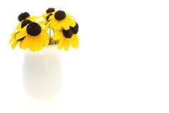 Rudbeckia en un florero fotografía de archivo libre de regalías