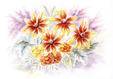 Rudbeckia and marigold flowers. Drawing a water colour on a paper: rudbeckia and marigold flowers Stock Photos