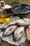 Rudd, ide. Fresh fish rudd, ide on a wooden table stock photography