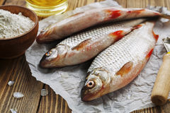 Rudd, ide. Fresh fish rudd, ide on a wooden table royalty free stock photos