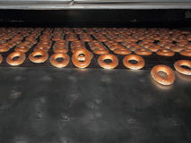 Ruddy bagels from the oven. Stock Photography