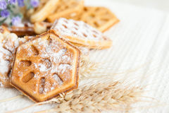 Ruddy homemade waffles with powdered Royalty Free Stock Photo