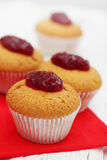 Ruddy muffins Stock Photos