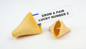 Rude Insulting Misfortune Cookie. Rude and insulting MISfortune cookie: GROW A PAIR-LUCKY NUMBER TWO. Humor. Fun Stock Photography