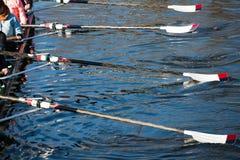 Ruder, die flach auf durchschnittlichen Rennen des Wassers stillstehen Lizenzfreie Stockfotografie