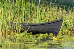 Ruderboot im Schilf Stockfotos
